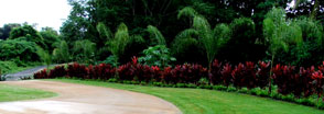 Hawaii Landscaping Ideas