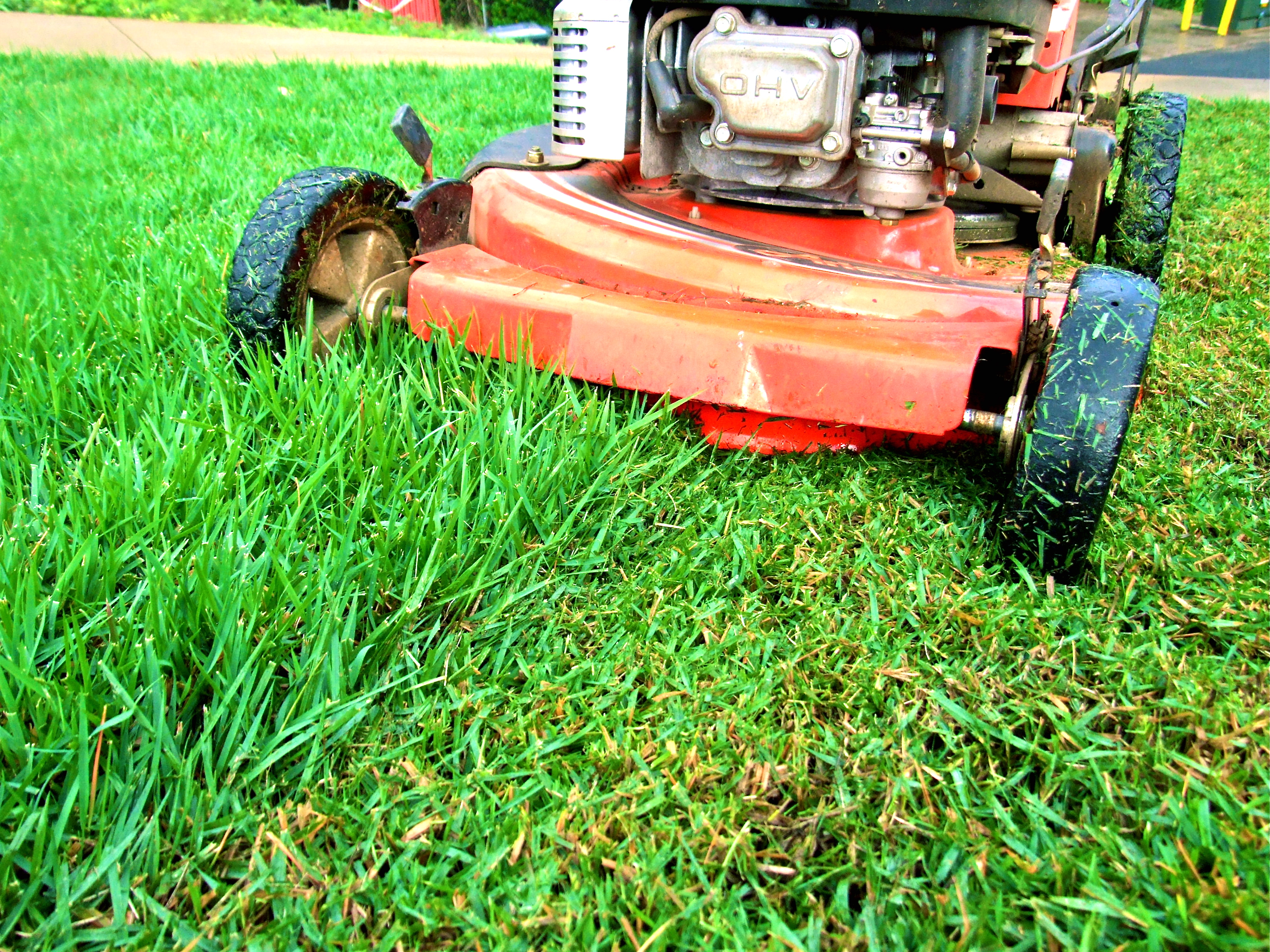 Best Of Local Lawn Mowing Services